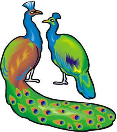 About boxing essay peacock in kannada - Oasi Park News